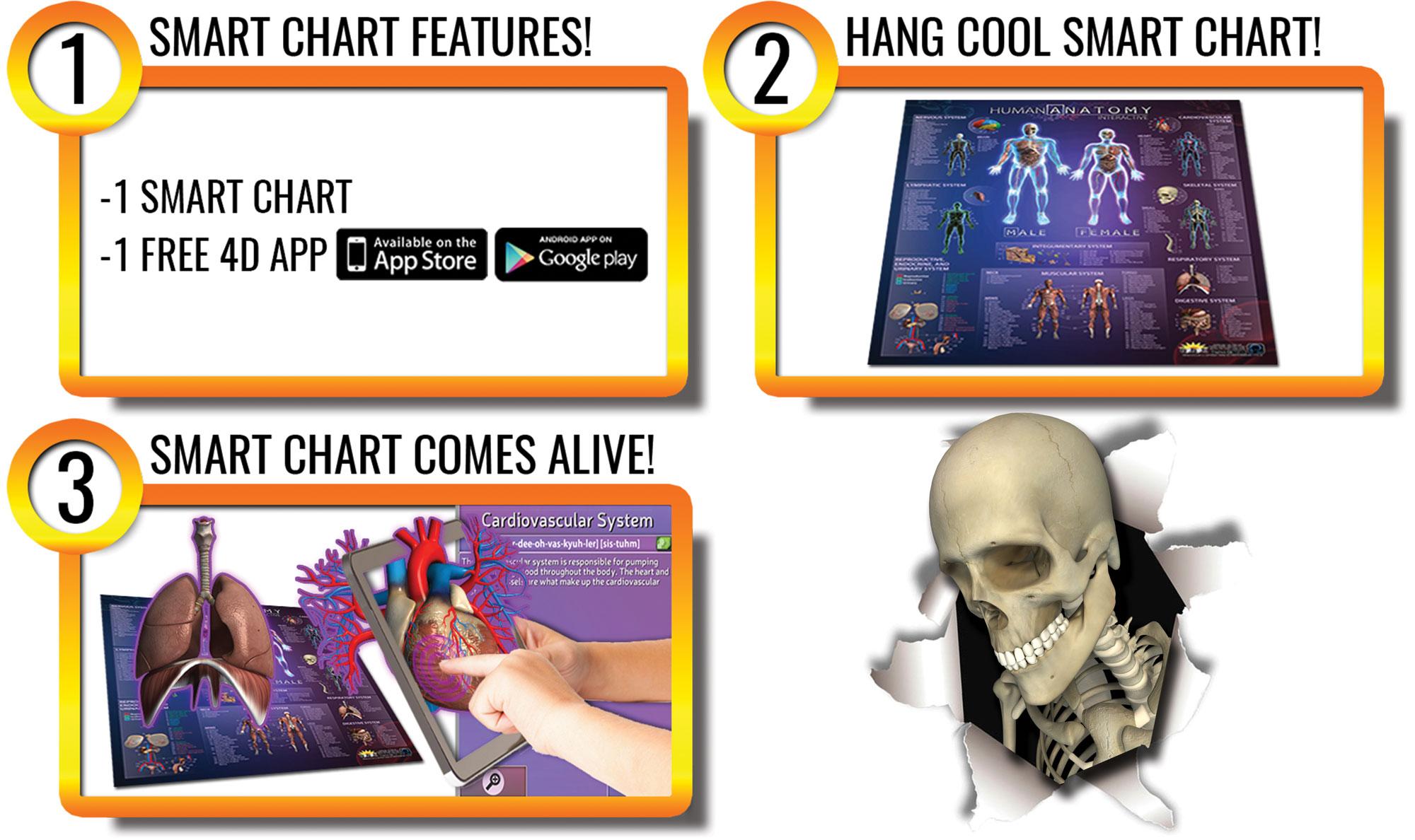 Human Anatomy Augmented Reality Smart Chart