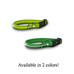 Visiglo Illuminated Neon Nylon Collar with Dual Function LED's